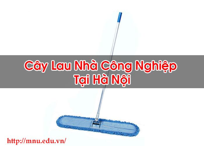 Cây Lau Nhà Công Nghiệp Tại Hà Nội