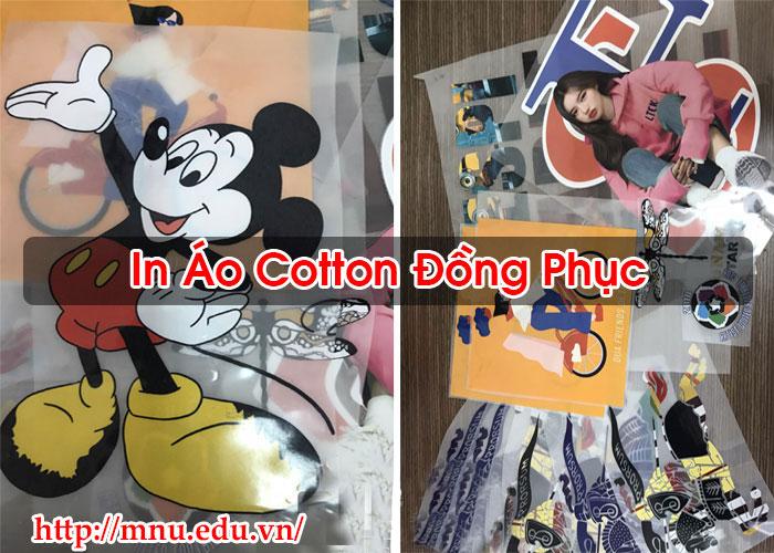 In Áo Cotton Đồng PhụcIn Áo Cotton Đồng Phục