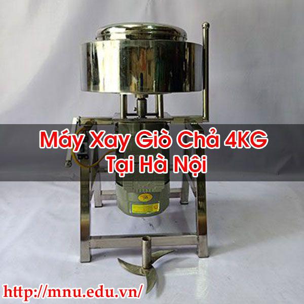 Máy Xay Giò Chả 4KG Tại Hà Nội